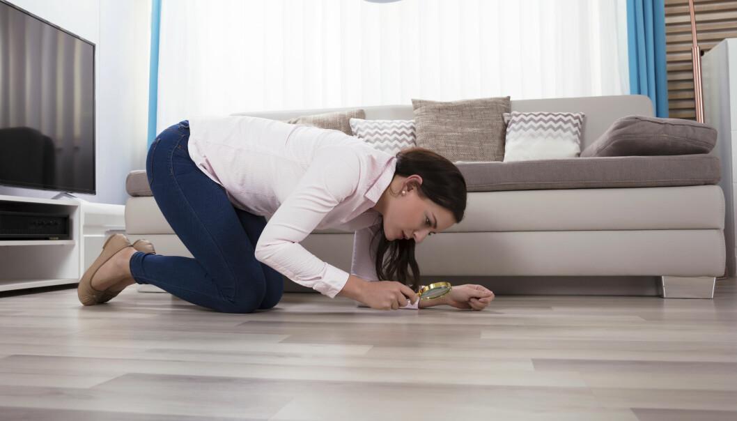Kvinna som kryper på golvet och studerar det med förstoringsglas