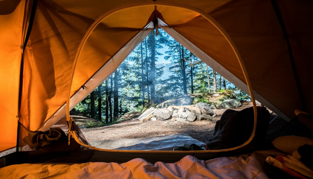 Utsikt inifrån ett tält.