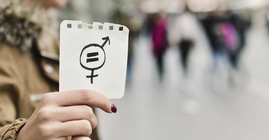 Jämställdhetsförmedlingen lägger ner 2019