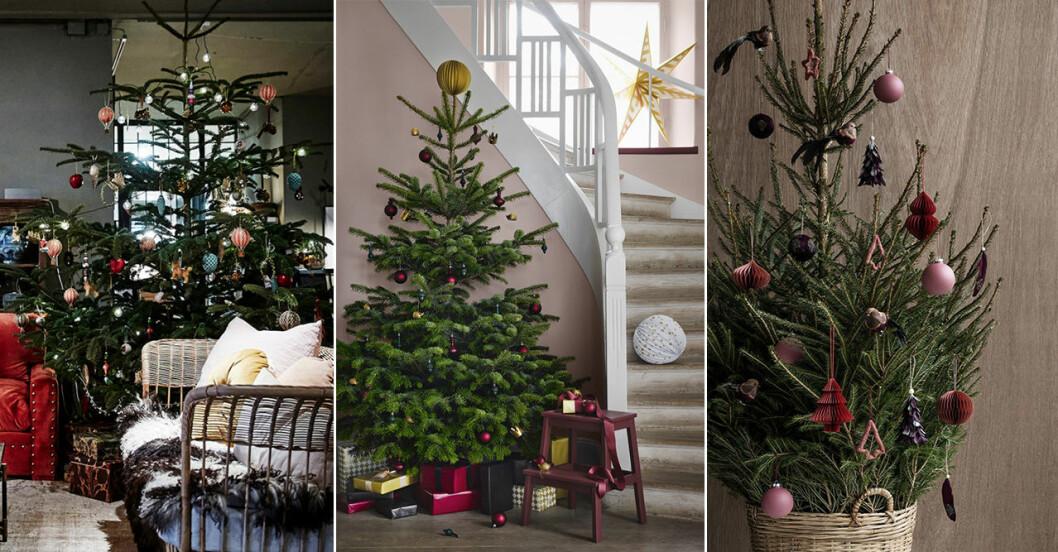 Årets trendigaste julgranar 2018