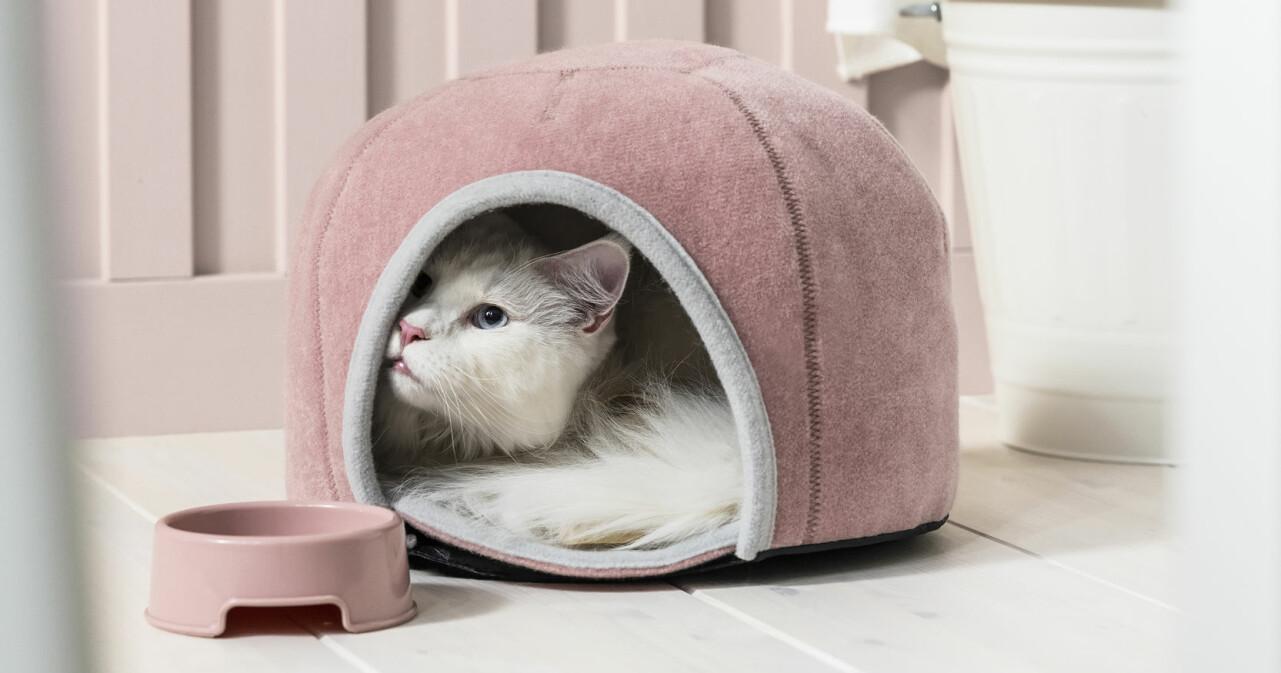 Katt gosar i katthus från Ikeas nya kollektion Lurvig.
