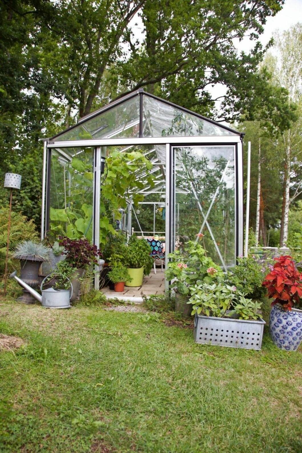 Kerstin Holmberg fick äntligen sitt växthus.