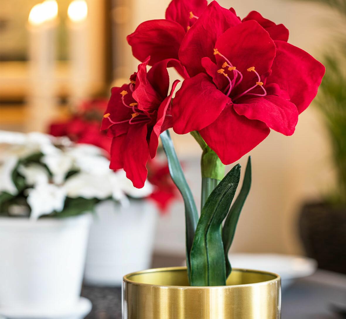 Konstgjord röd amaryllis i en guldkruka