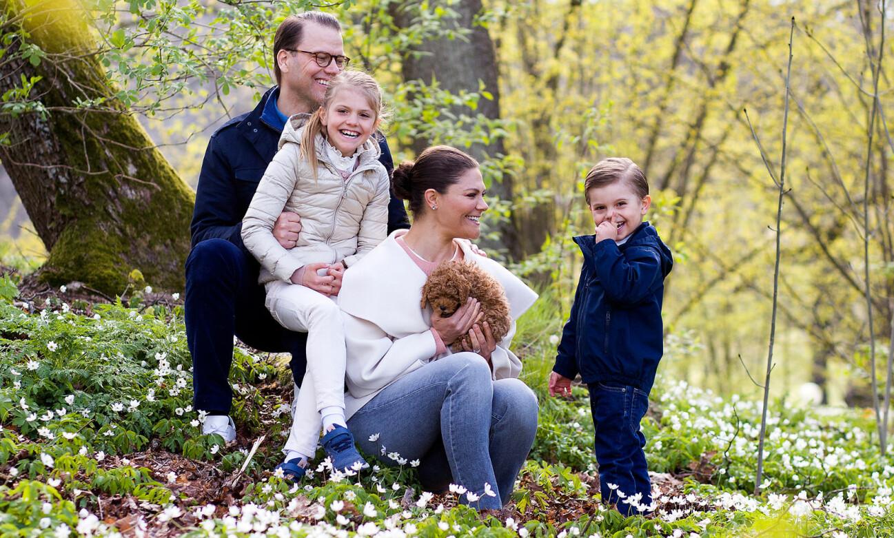 Kronprinsessan Victoria, prins Daniel, prinsessan Estelle och prins Oscar med familjens nya hundvalp Rio.