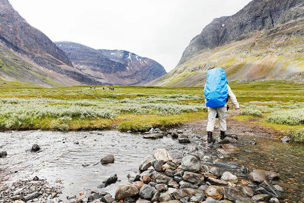 En bild från den svenska vandringsleden Kungsleden i Lappland.