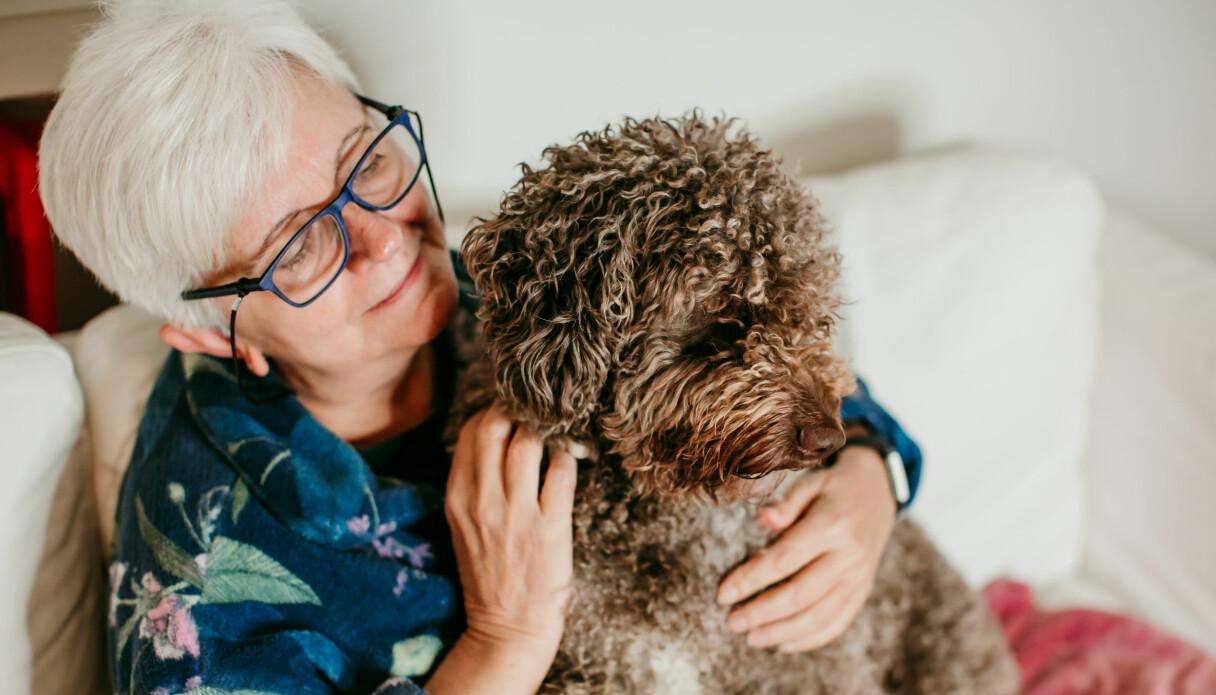 Äldre kvinna med lurvig, brun, mellanstor hund i knäet.