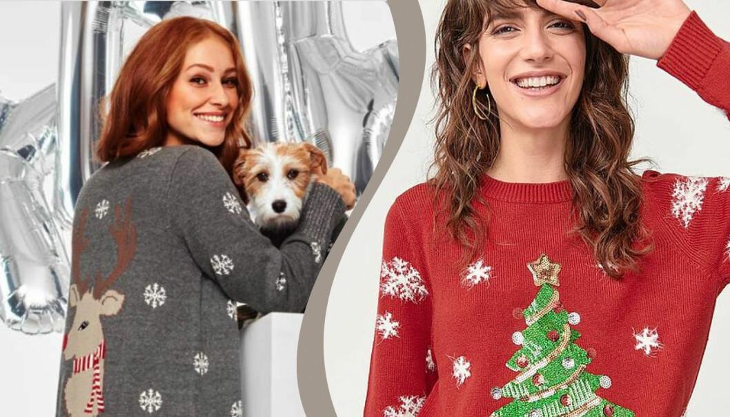 Kvinnor och en hund med jultröjor.