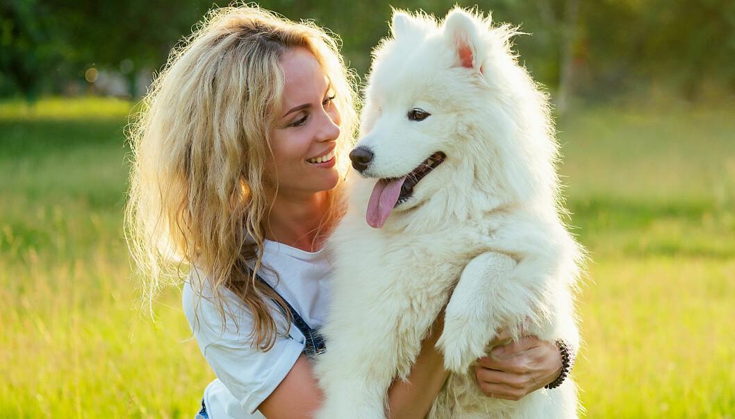 Leende kvinna myser med sin hund en solig sommardag.