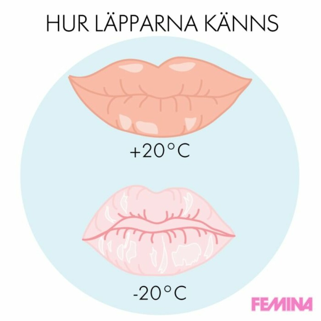 lipsfemina