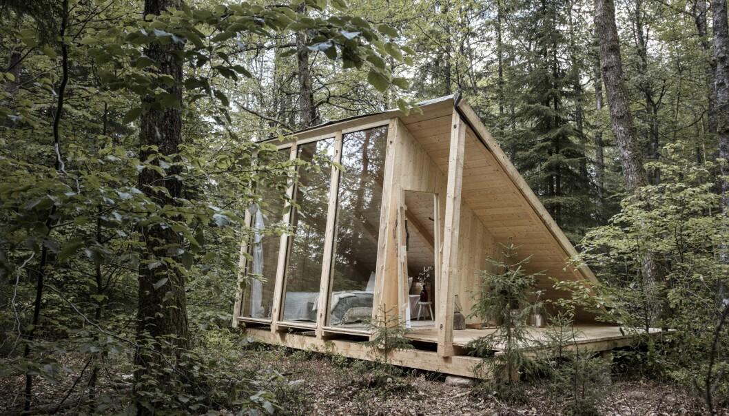Litet modernt trähus i skogen.