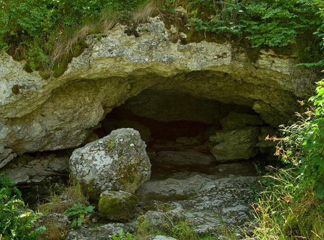 En bild på ingången till Lummelundagrottan på Gotland.