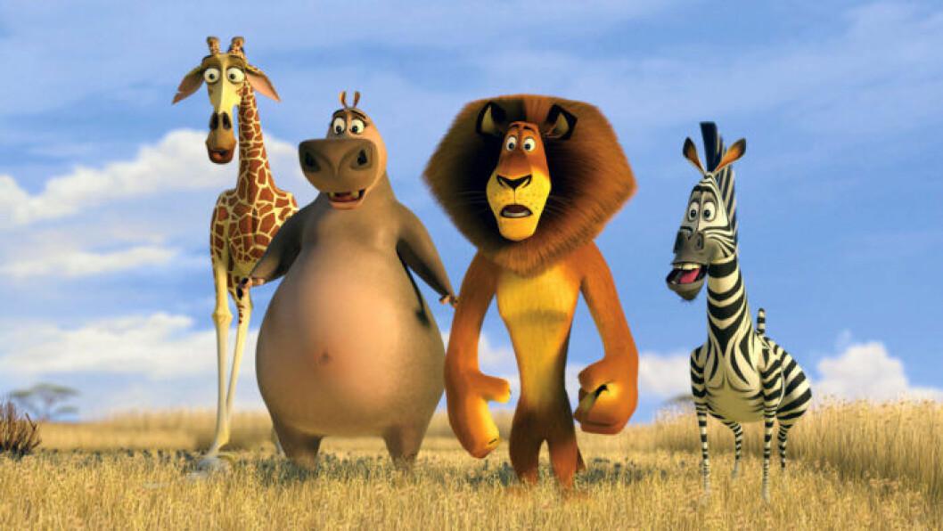 David Schwimmer gjorde rösten till giraffen Melman i Madagascar.