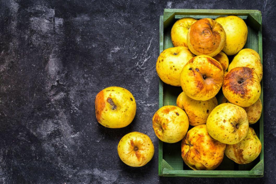 Minska matsvinnet genom att inte bara använda perfekta frukter.