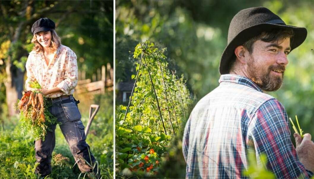 Nybrukarna odlar till sina grannar och är nu självförsörjande.