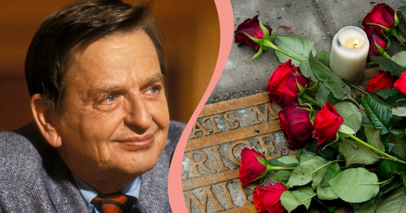 Olof Palme och rosor.
