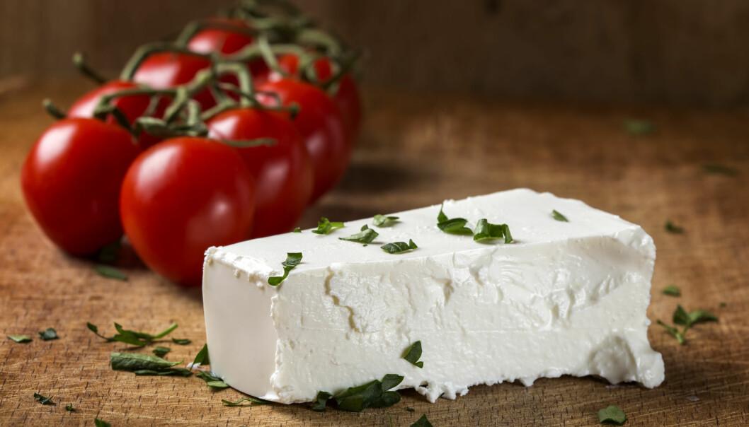 Opastoriserad ost kan vara smittad med TBE.