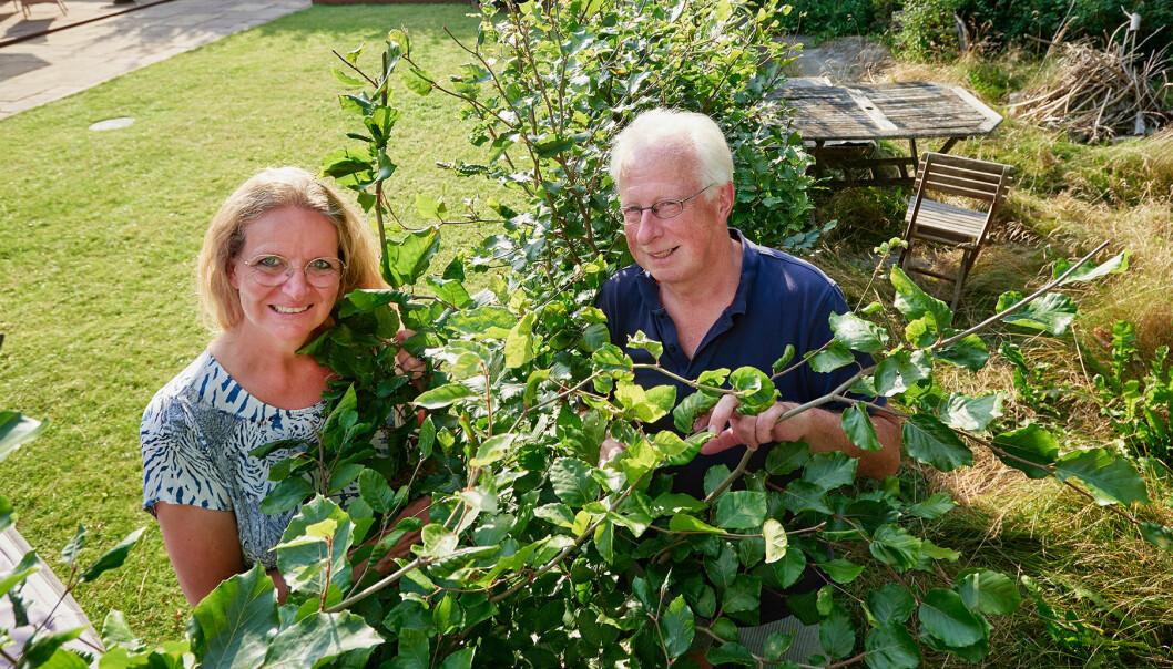 Vibeke och Kurt i trädgården bakom en buske