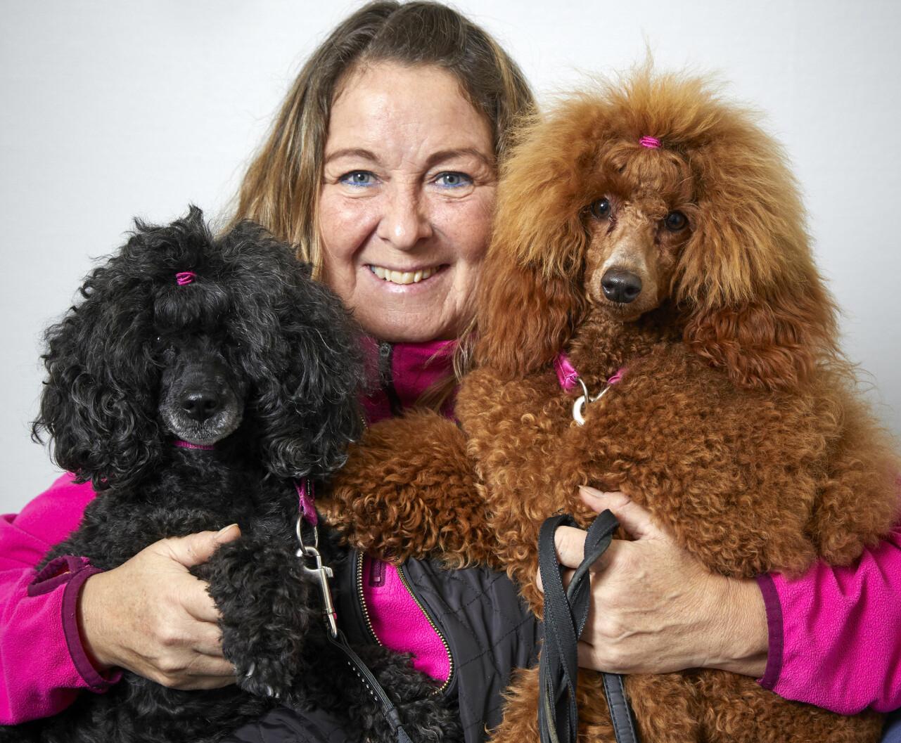 Pia Dahlqvist tillsammans med sina två hundar som har hjälpt henne tillbaka efter en stroke.