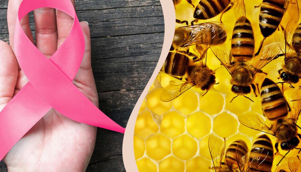 Till vänster ett rosa band lagt i kors i en hand, till höder bin i en bikupa.