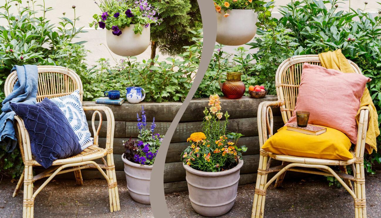 Delad bild på två olika uteplatser. Till vänster: En blå och lila. Till höger: Varma orange toner.S
