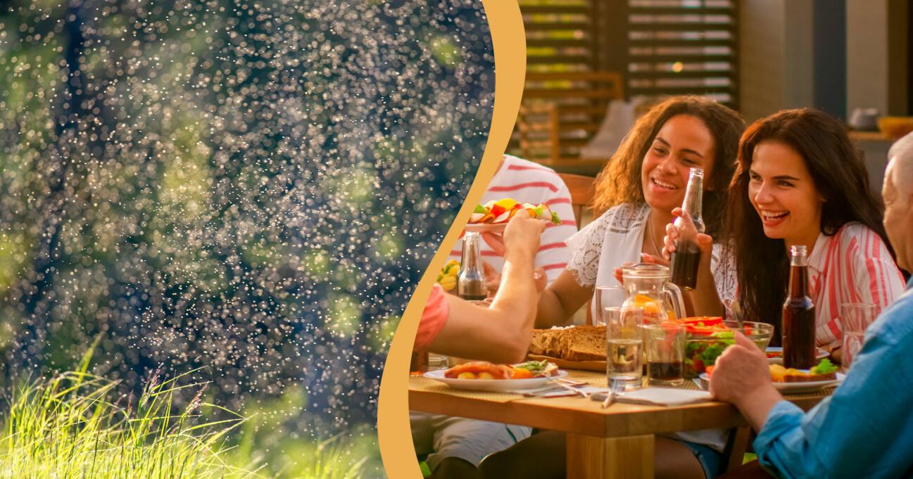 Slipp myggplågan med myggmaskinerna som hjälper