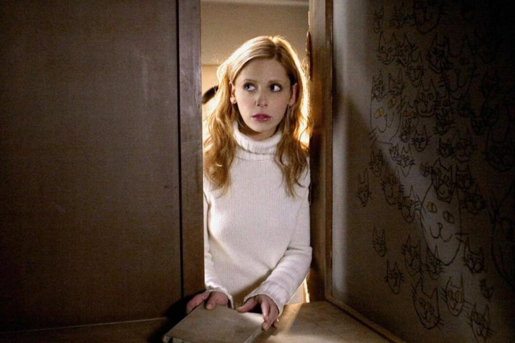 En bild på Sarah Michelle Gellar, som spelar sjuksköterskan Karen Davis i The Grudge (2004).