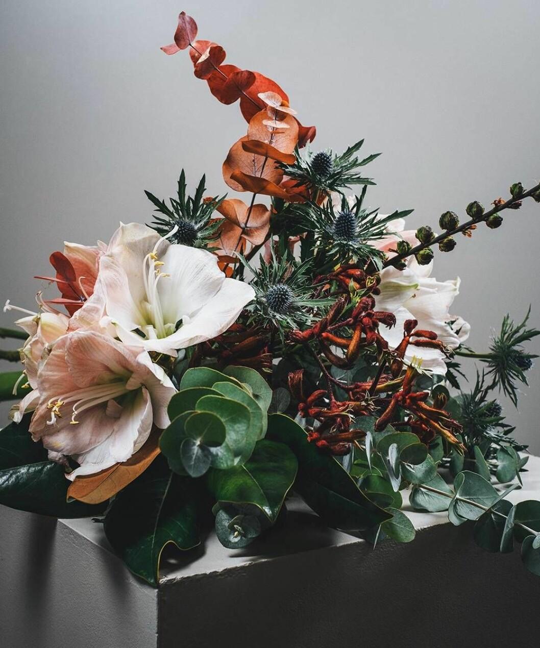 Säsongens snittblommor i höst och vinter