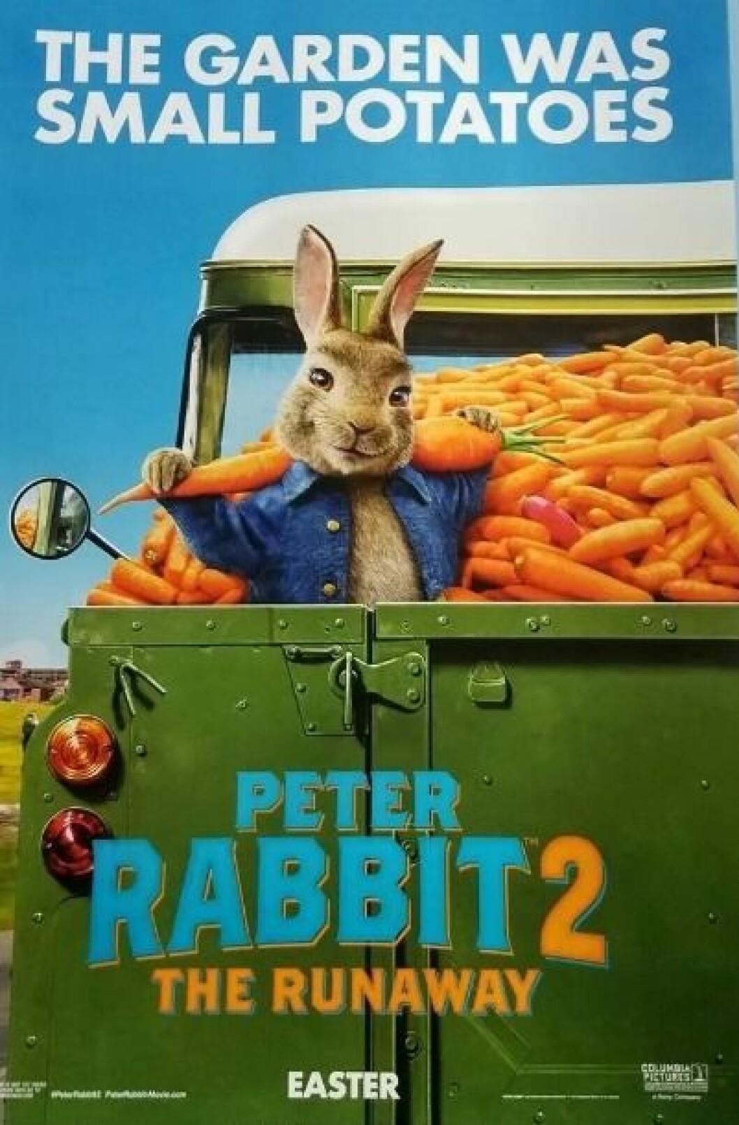 Peter Rabbit 2.