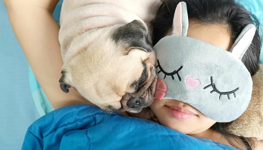 Kvinna sover gott med sin hund i sängen