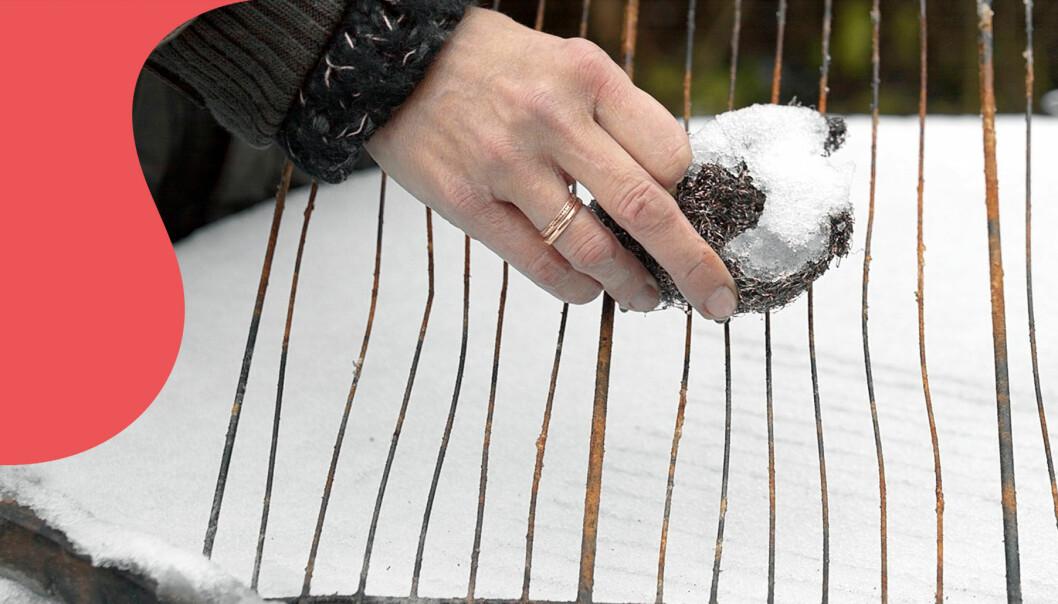 Kvinna skrubbar grillgaller.
