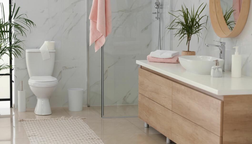 Ett välstädat badrum med växter i.