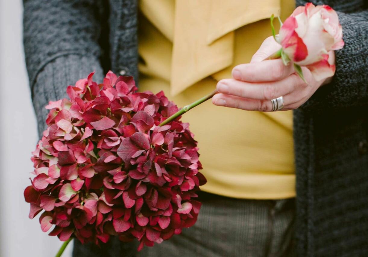 Stick ner blommor i din kompakta hortensia.