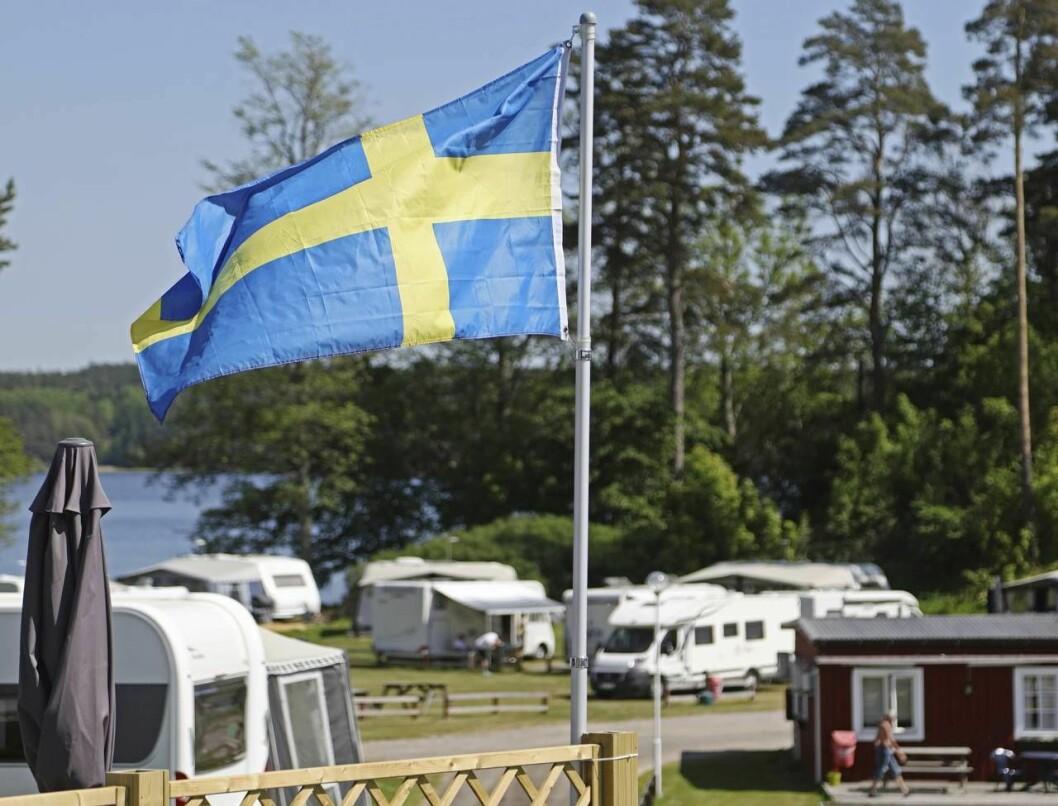 Campingplats med svensk flagga