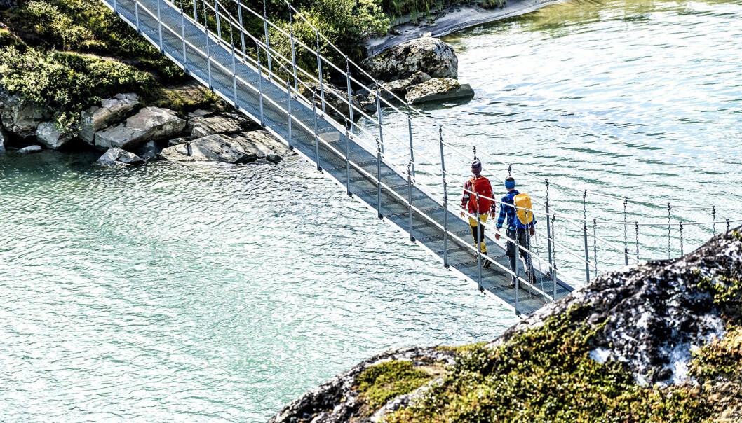 Vandrare på bro