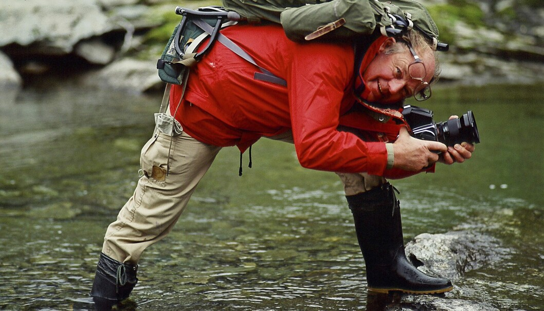 Fotografen och grundaren av svenska Världsnaturfonden, Sven Gillsäter, står i en å och håller sin kamera i händerna