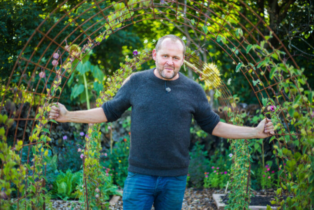 Trädgårdsmästaren John Taylor i trädgården.