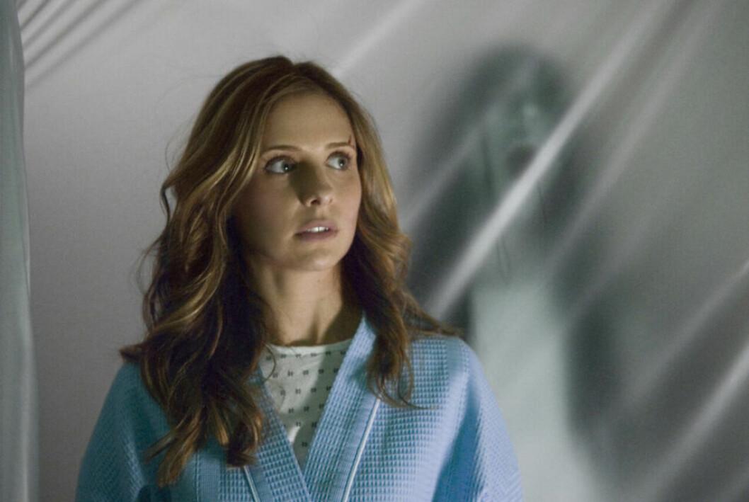 En bild på Sarah Michelle Gellar i skräckfilmen The Grudge.