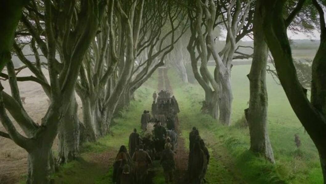 En bild på den långa vägen The Kingsroad, från tv-serien Game of Thrones.