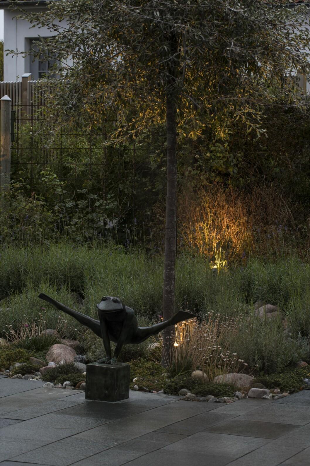 När belysning riktas på en utvald växt får den spela huvudroll på kvällen. Samma sak gäller dekorationer.