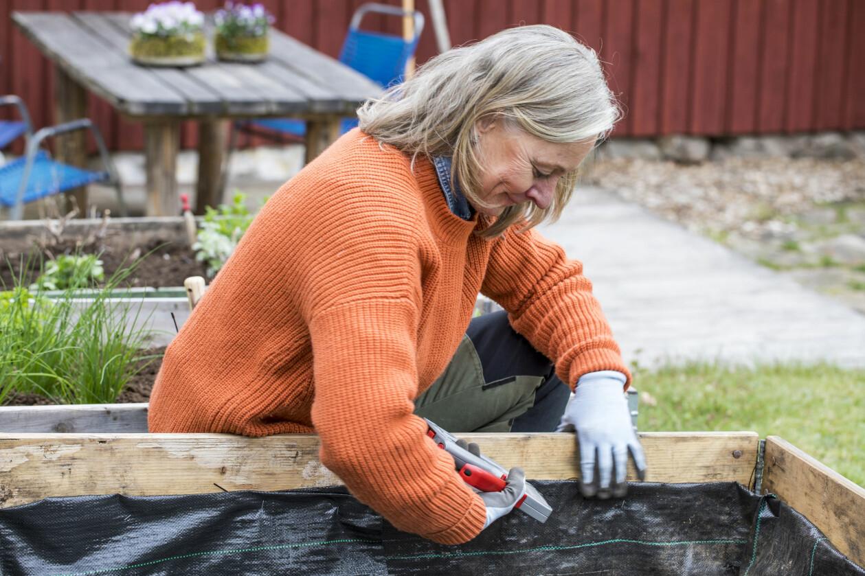 Trädgårdsexperten häftar fast klädseln på pallkragens insida.