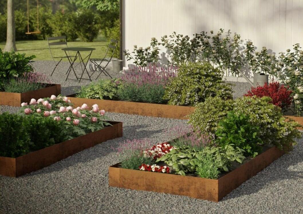 Planteringskanter i trädgården