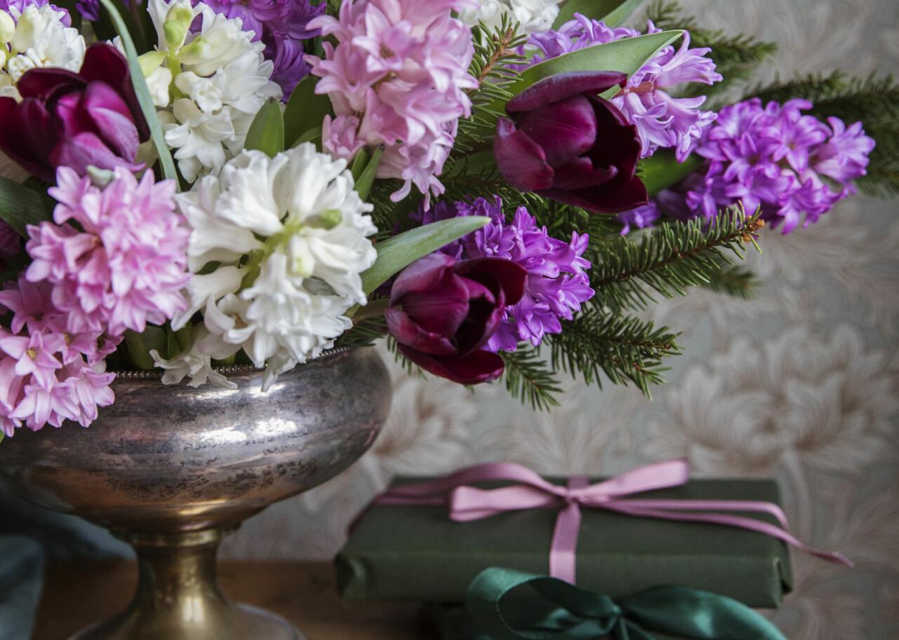 Vacker bukett med hyacinter i fokus.
