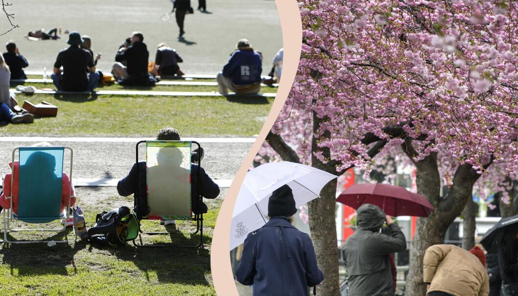 En kollagebild av två foton, ett är en bild av två personer som går med paraply en regnig dag, och den andra bilden består av flera personer som sitter och solar i vårvädret.