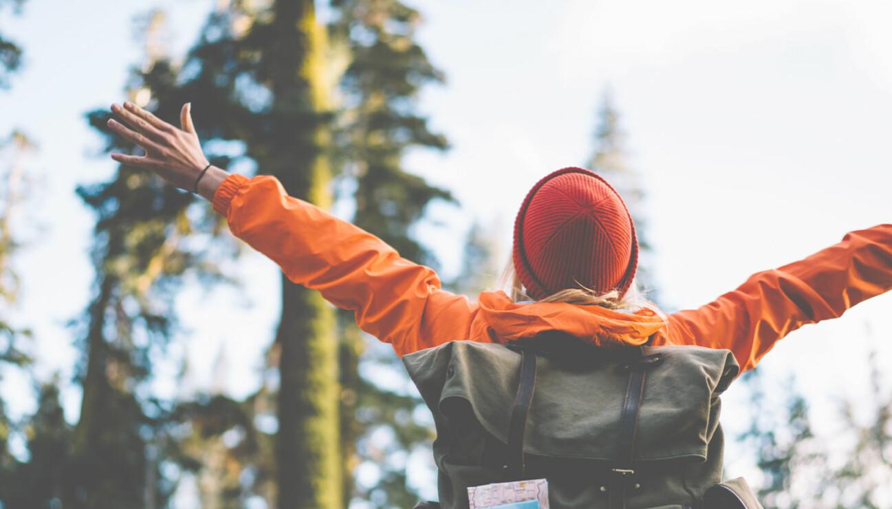 En person som anammar de tolv anledningarna till att börja vandra.