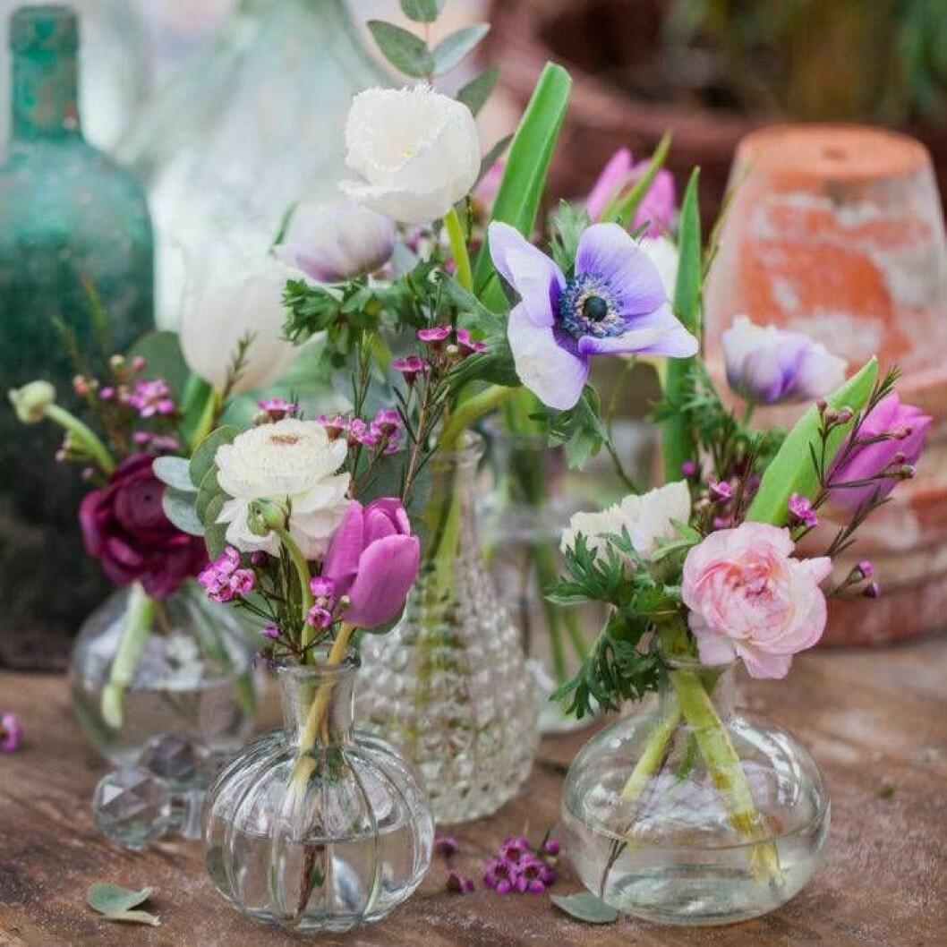Det räcker med en eller några få blommor i varje vas!