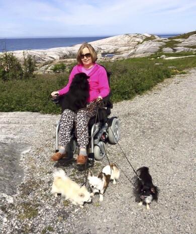 Venke i rullstol utomhus med sina tre hundar.