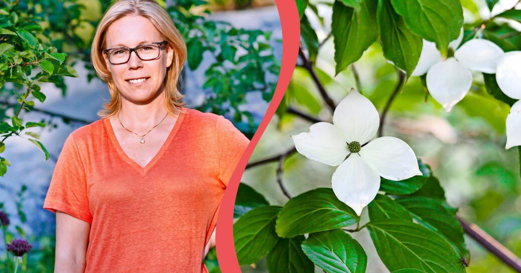 Porträtt av Johanna Antonsson vinnare av Årets trädgård 2020.